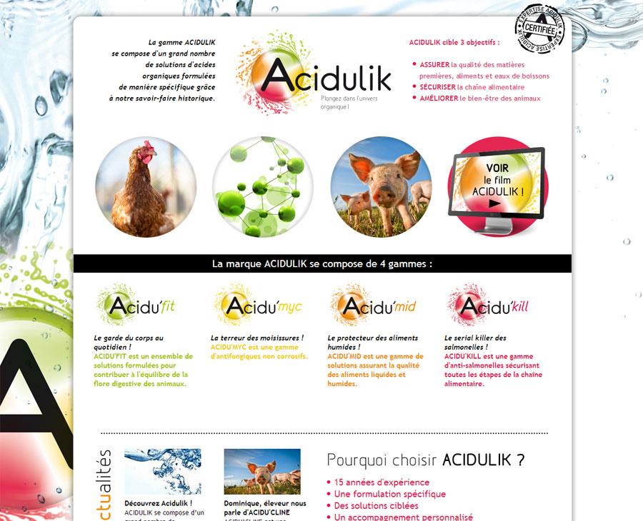01 - Accueil Acidulik